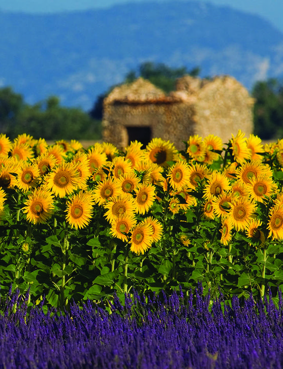 Provence, France